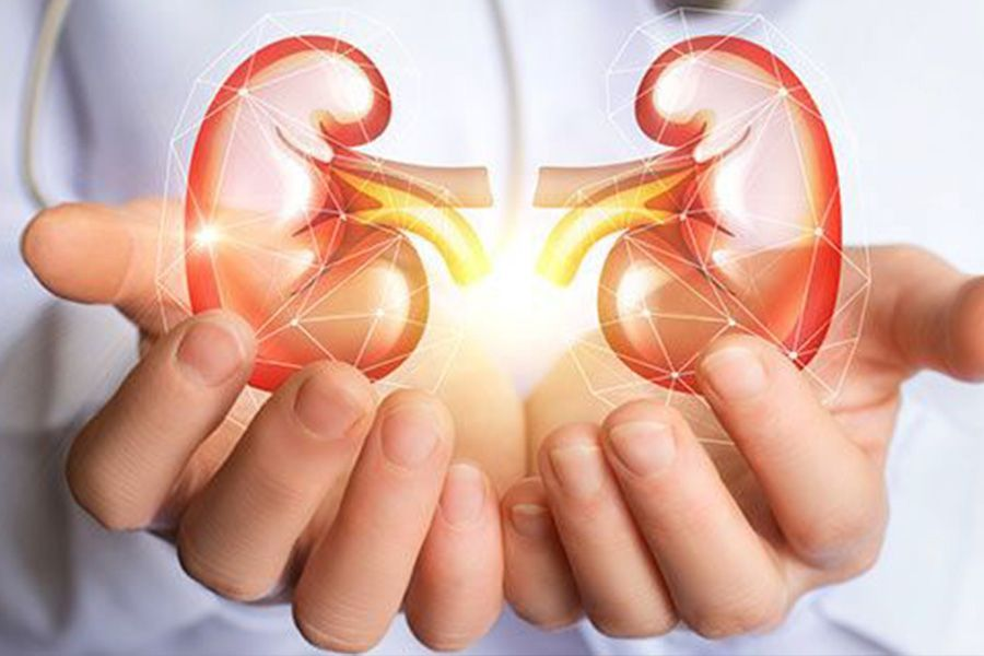 What Creatinine Blood Test Low and High Ranges by  Dr. Shiji Thomas Varghese