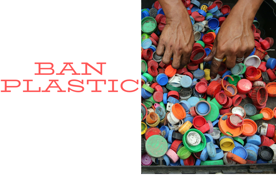 Can Plastic Bans Curb Plastic Consumption in Kerala
